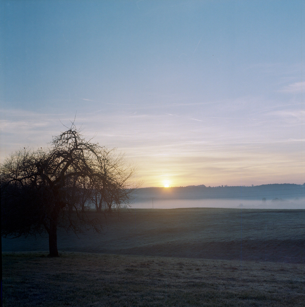 6_Morgenstimmung_KodakPortra