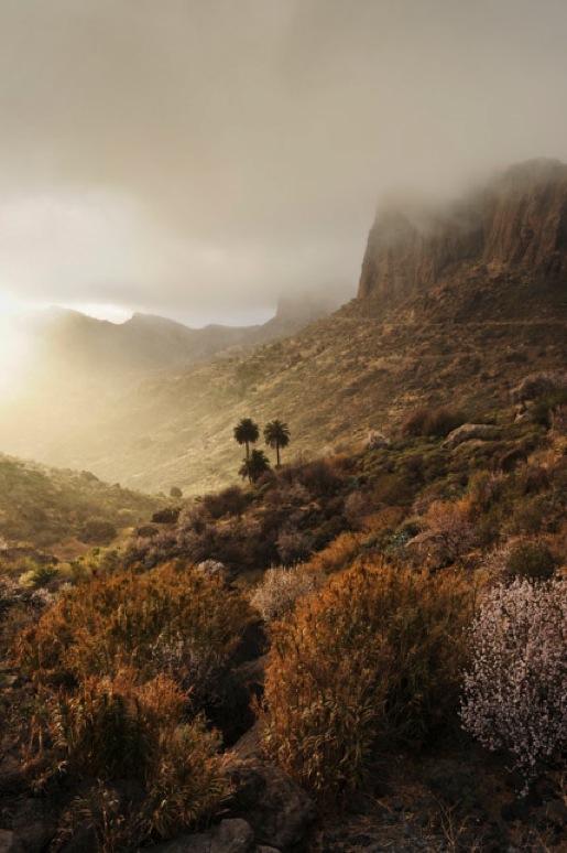 Gran Canaria (D. Bruderhofer)