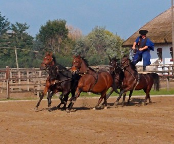 Ungarische Reitervorführung