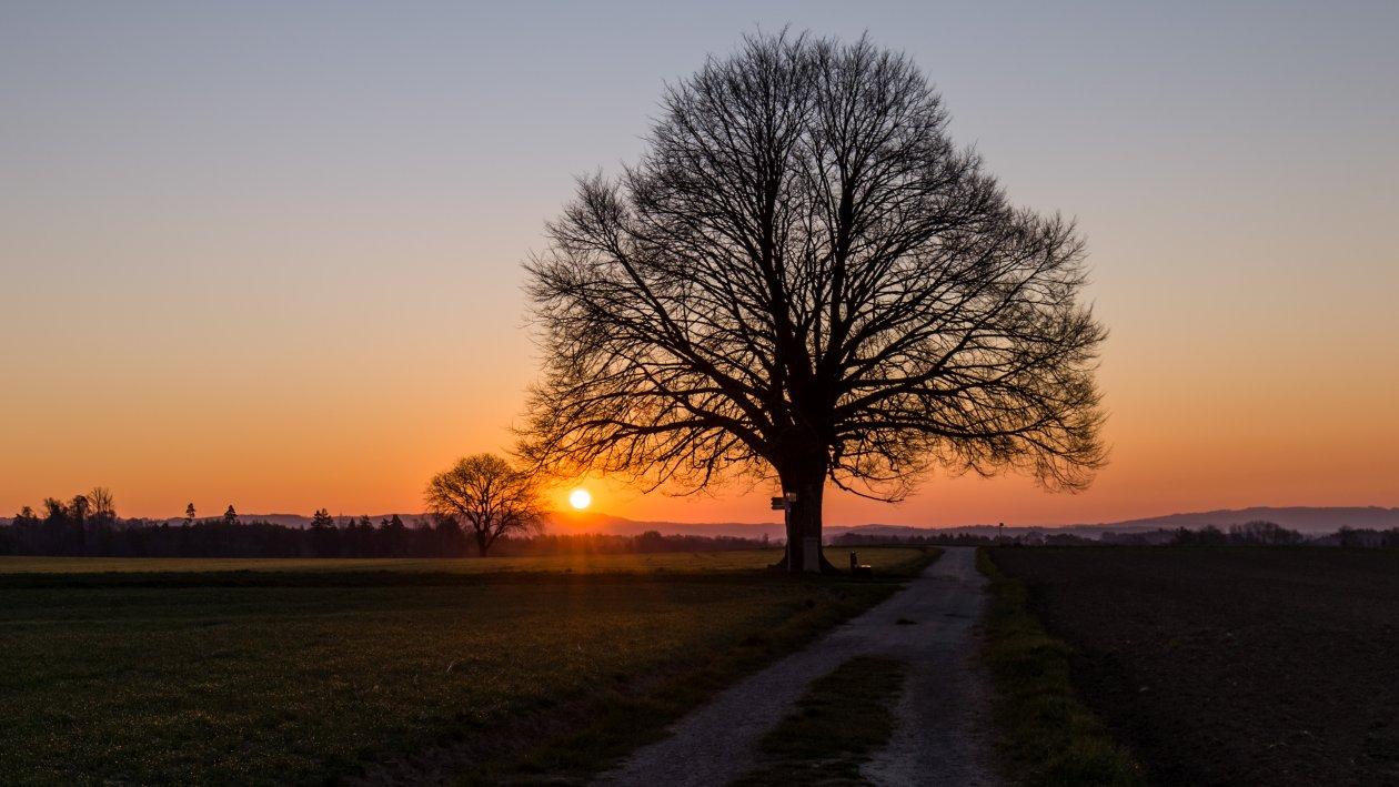 12_Sonnenaufgang bei Hödingen