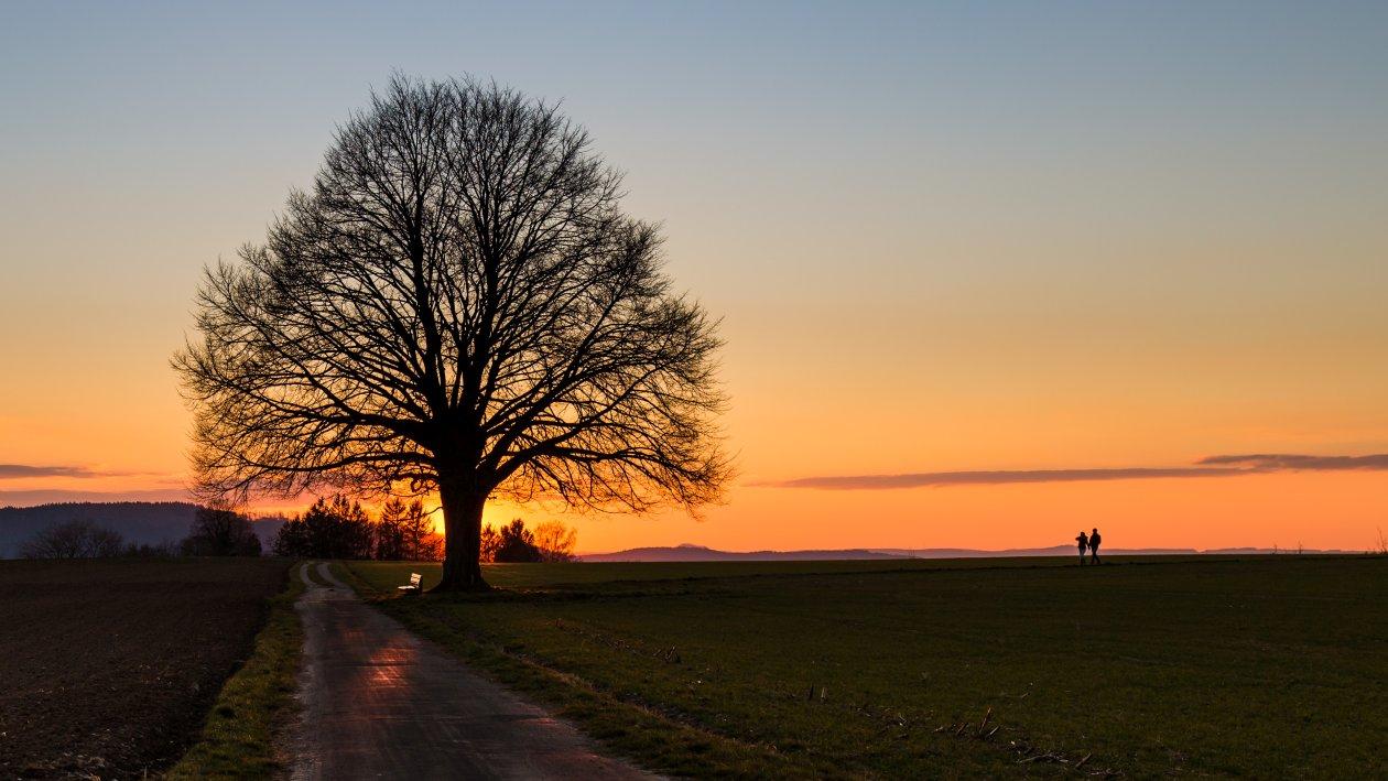13_Sonnenuntergang bei Hödingen