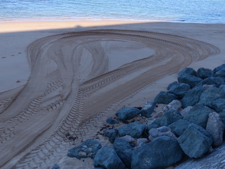 Detlef Wernicke: Spuren im Sand