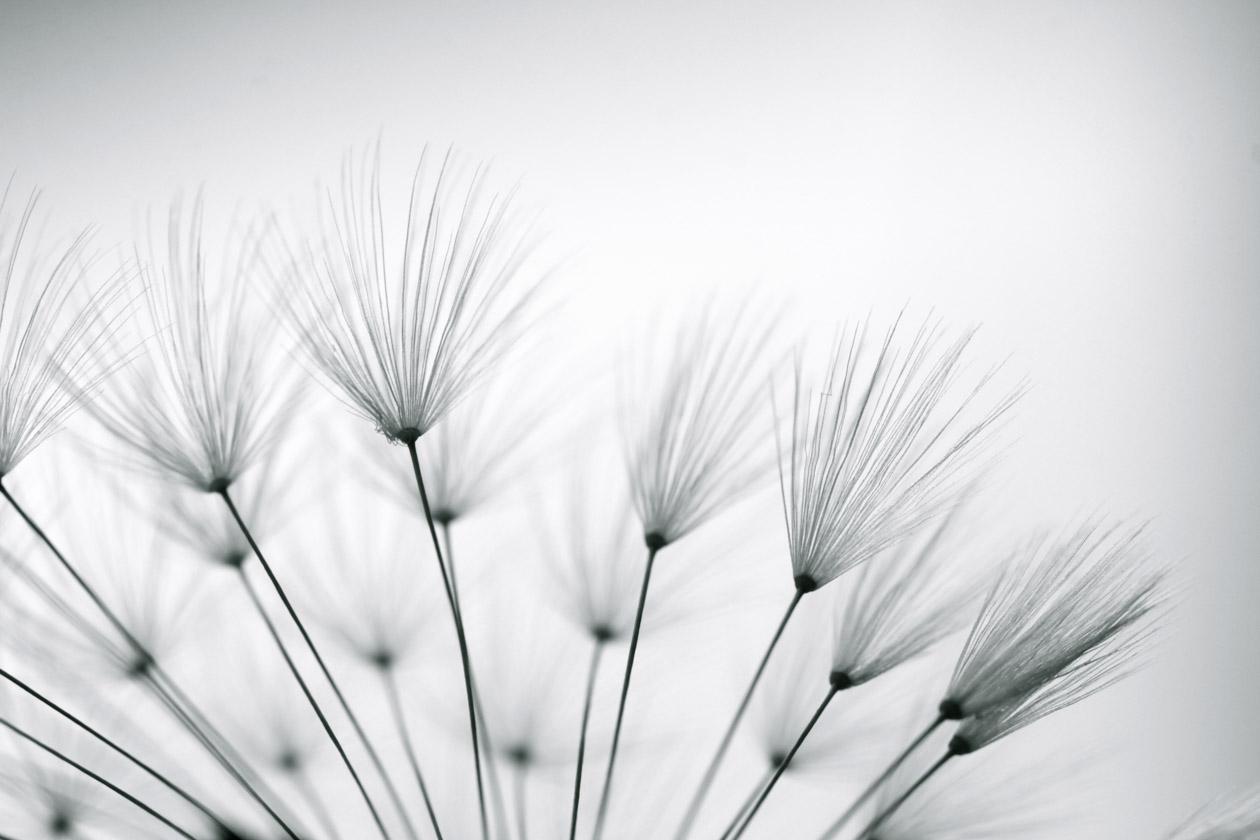 minimalistisch3