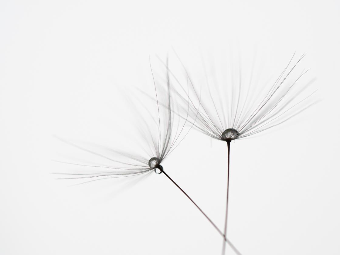 minimalistisch8