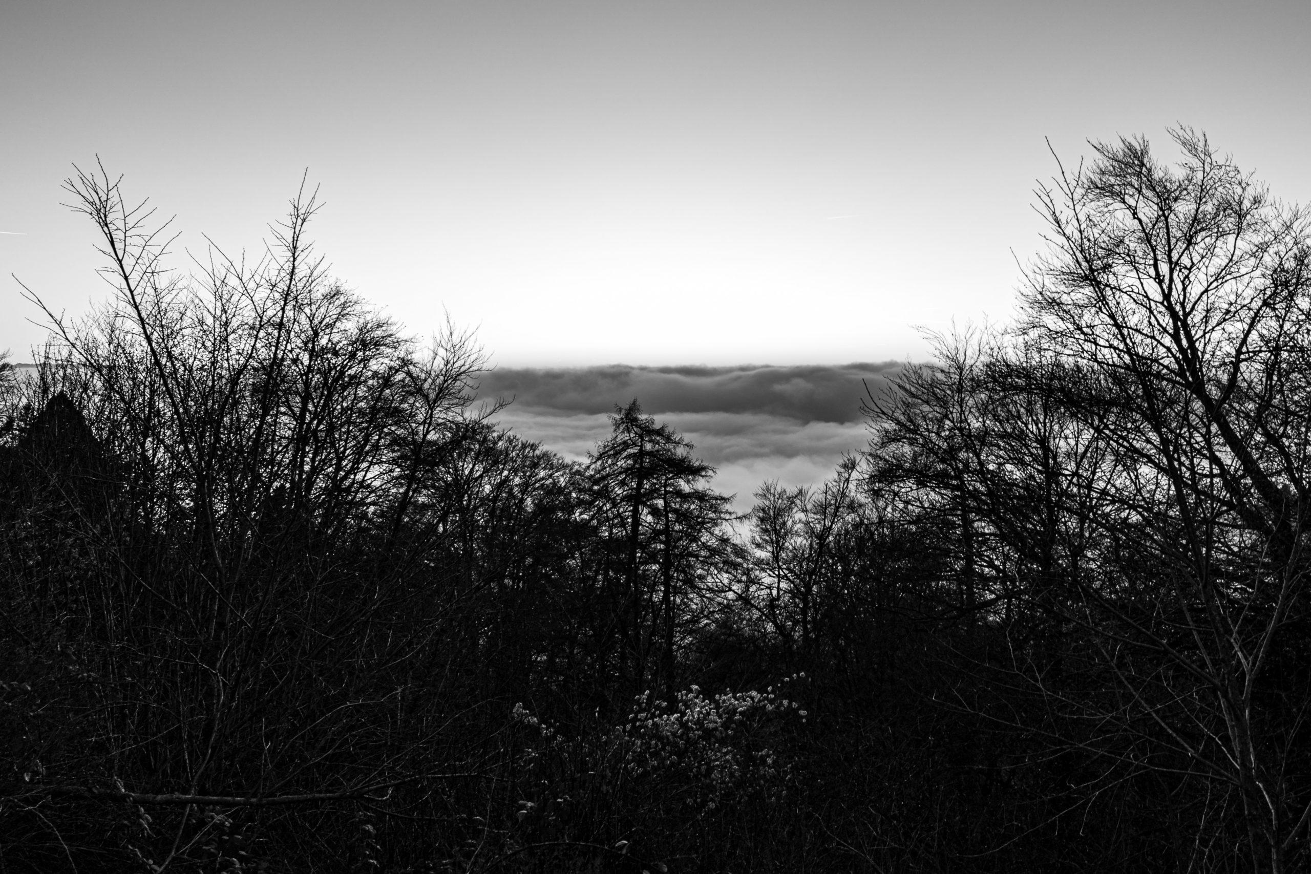 nebel-4