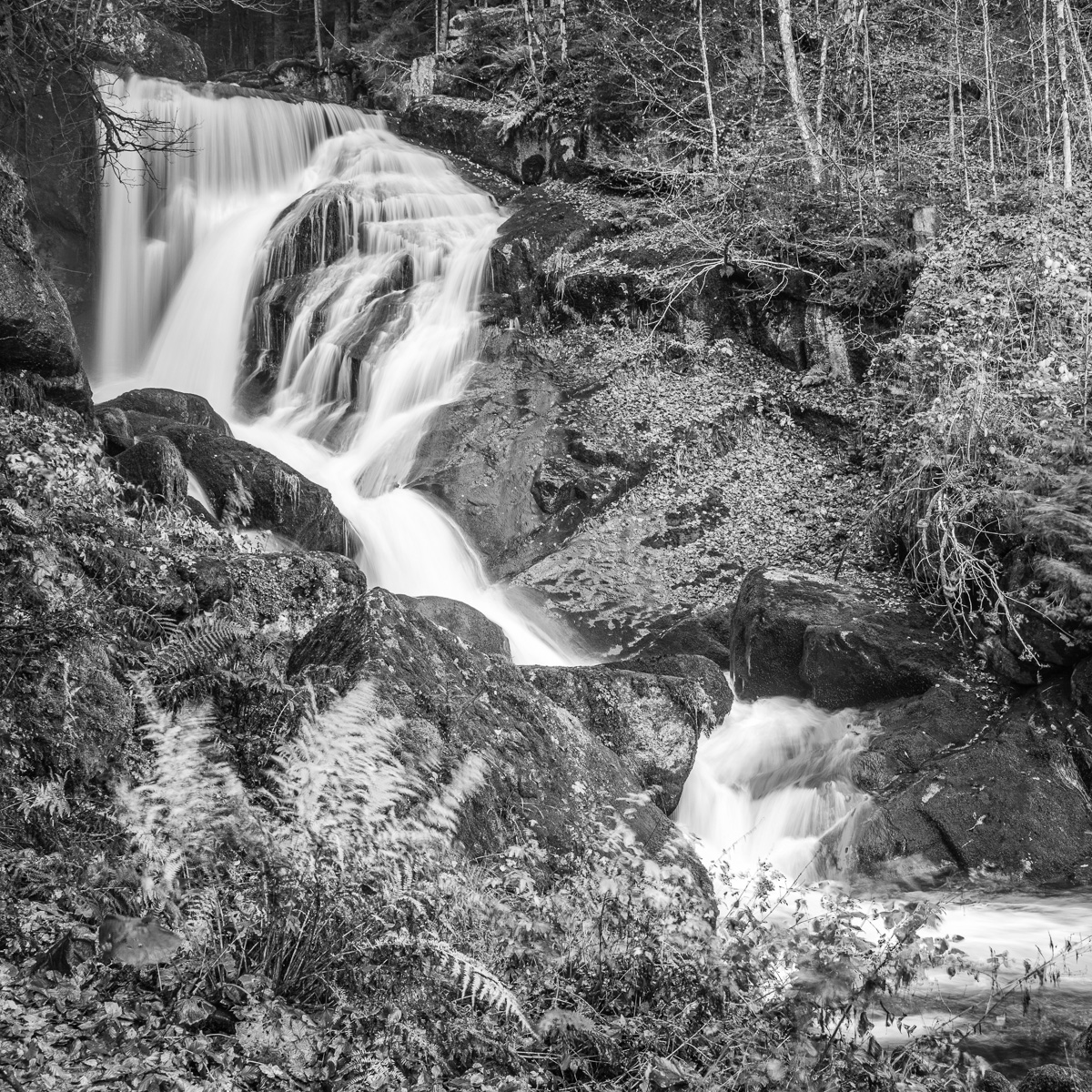 Triberger Wasserfall 3