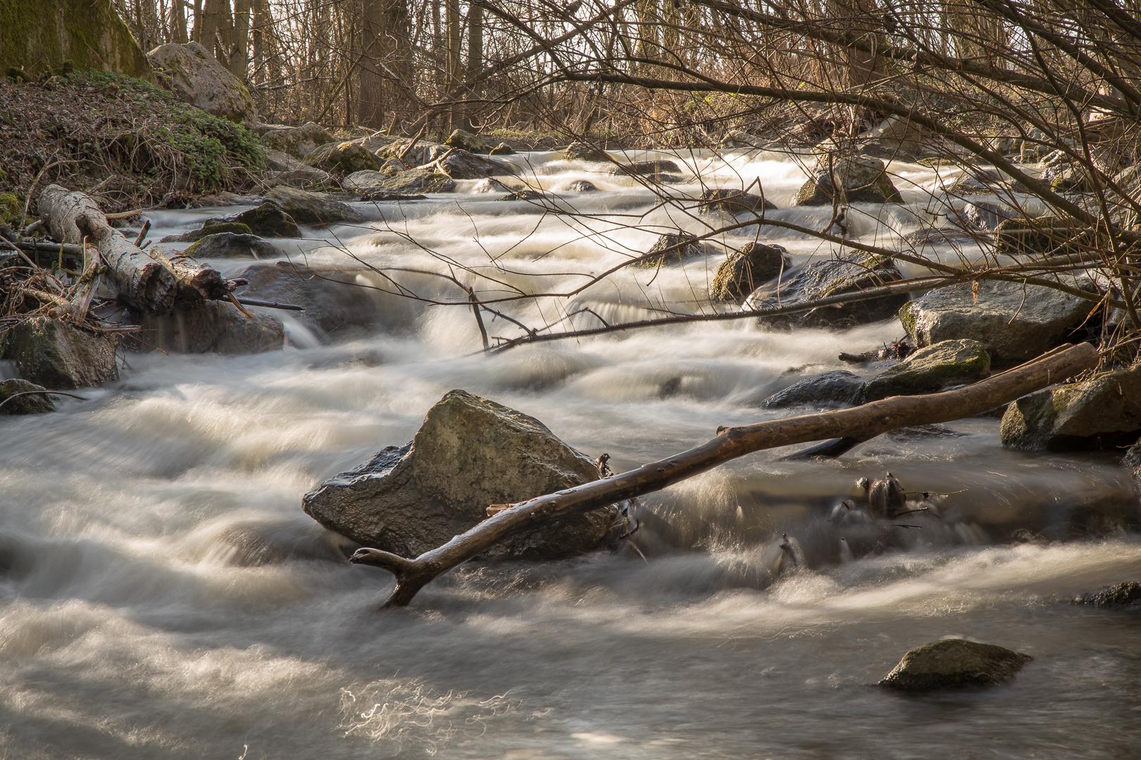 Im Fluss - Ewald Schlegel