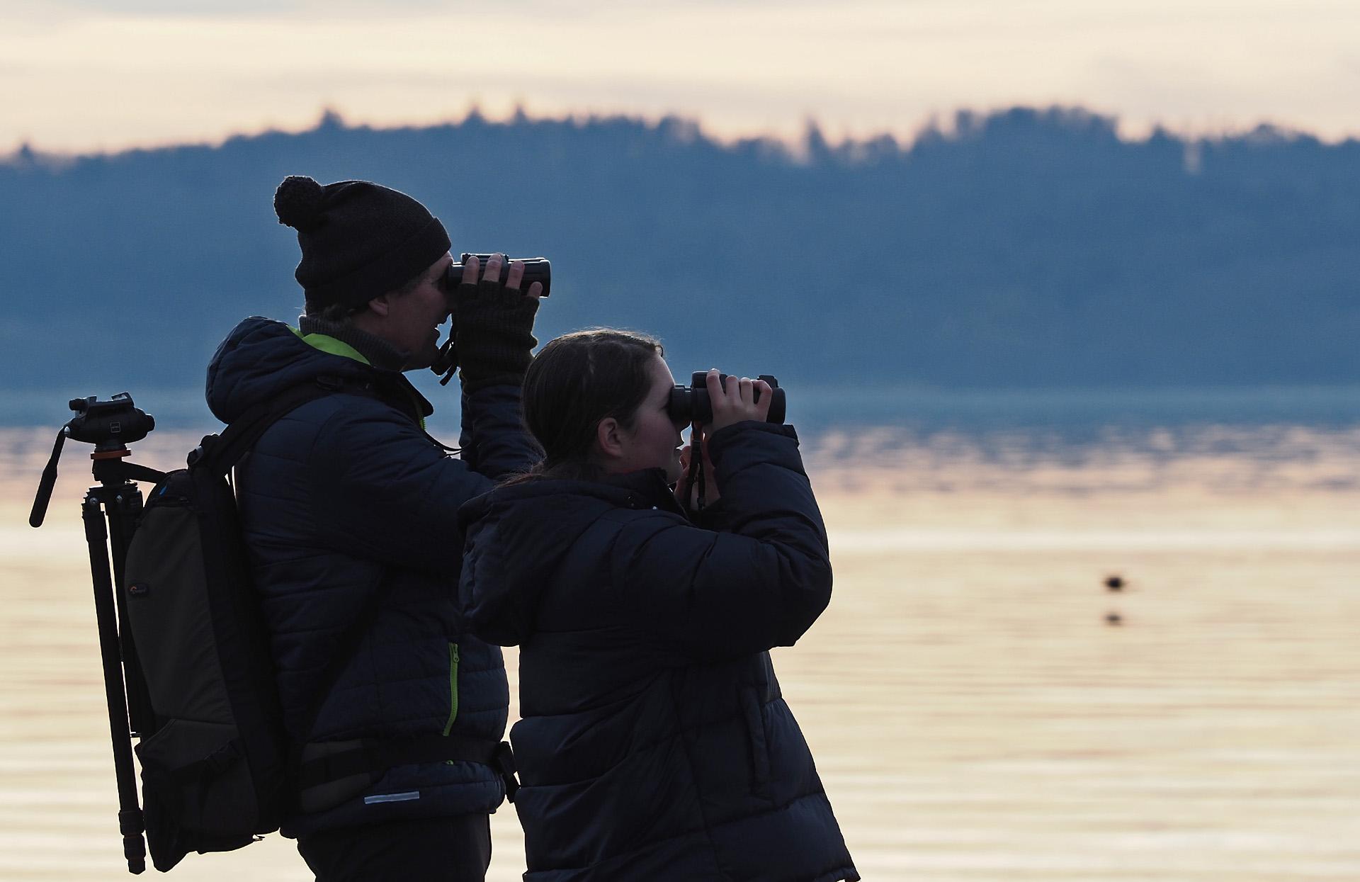 Wasservogelbeobachtung Foto: Bernhard Waurick