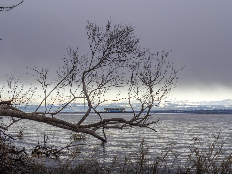 Nach dem Sturm Foto: Sabine Wohlbold