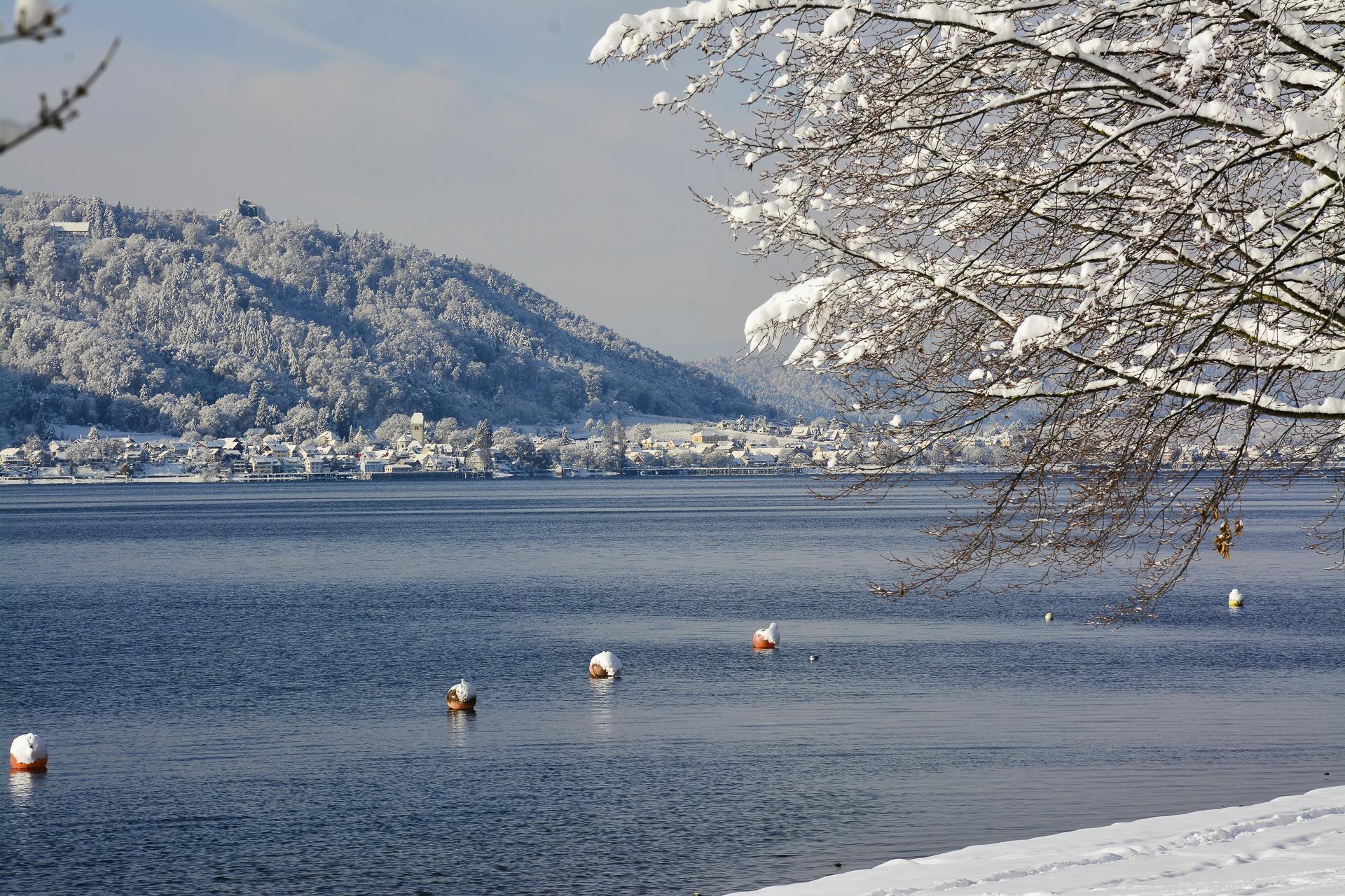 Winterwunderwelt Foto: Michael Schnurr